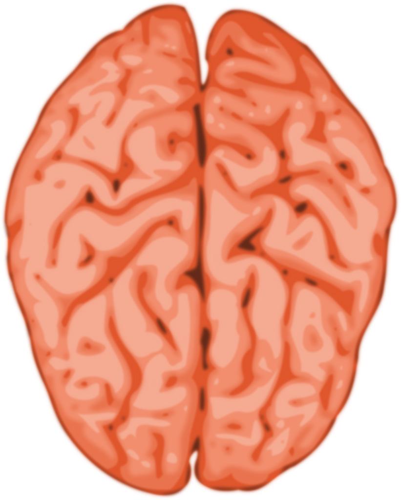 脳がシャキッとするのが快眠